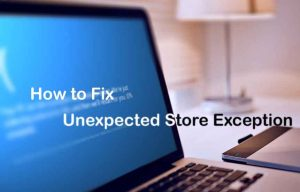 Unexpected Store Exception Windows 10